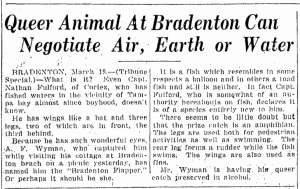 March 20 1926  Tampa Tribune Page 5