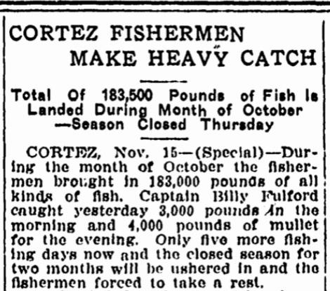 Tampa Tribune November 16, 1913